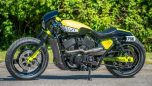 HD Street 750 Factory Racer by Shaw Speed and Custom